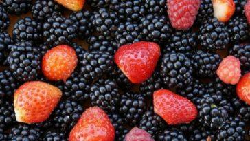 rojos-frutos