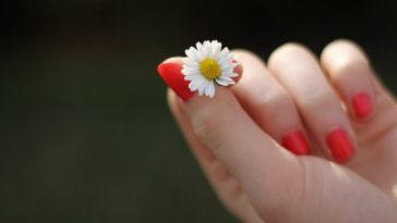 Alimentos buenos para las uñas