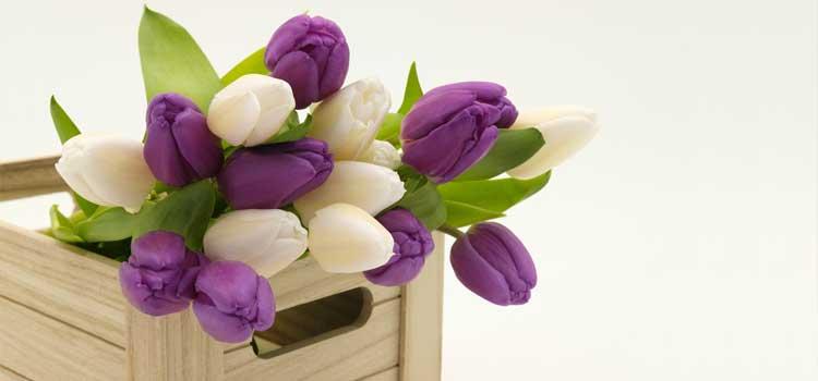 arreglos florales flores en caja