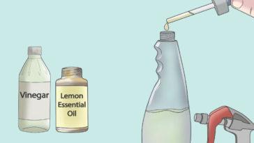 Aceites esenciales para limpiar la casa
