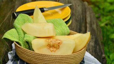 el melón engorda