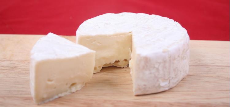 alimentos para prevenir la osteoporosis lacteos
