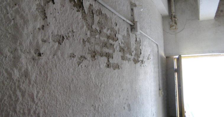 C mo eliminar la humedad de las paredes e consejos - Para la humedad de las paredes ...