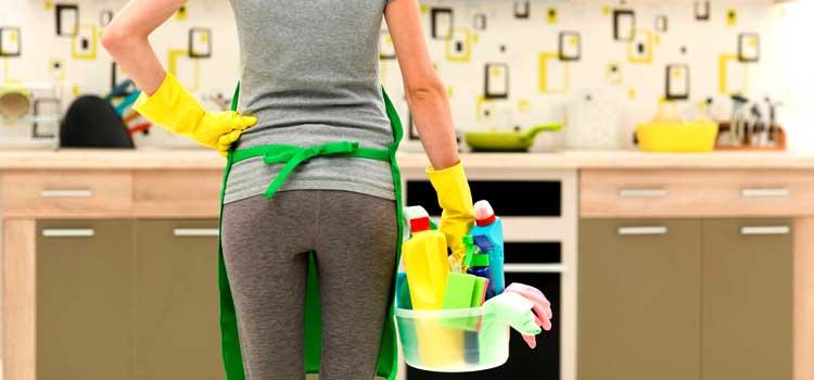 evitar aranas en casa limpieza