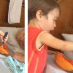 nino da de comer a su abuelito